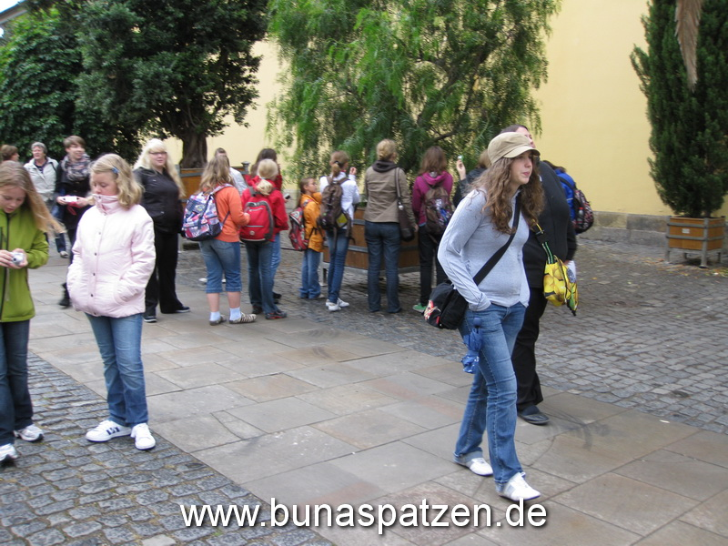 Bunis Hannover 09 109