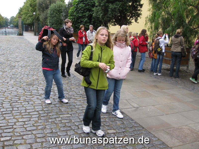 Bunis Hannover 09 110
